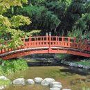 Balade zen dans un jardin japonais
