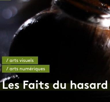 Biennale NEMO - Les Faits du Hasard - 104_Paris